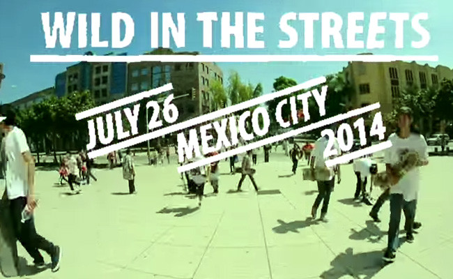 Emerica Wild In The Streets 2014